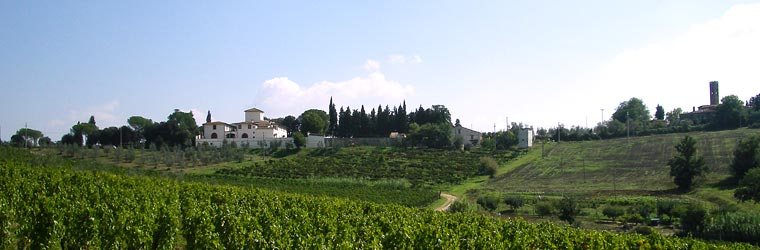 San Michele a Torri